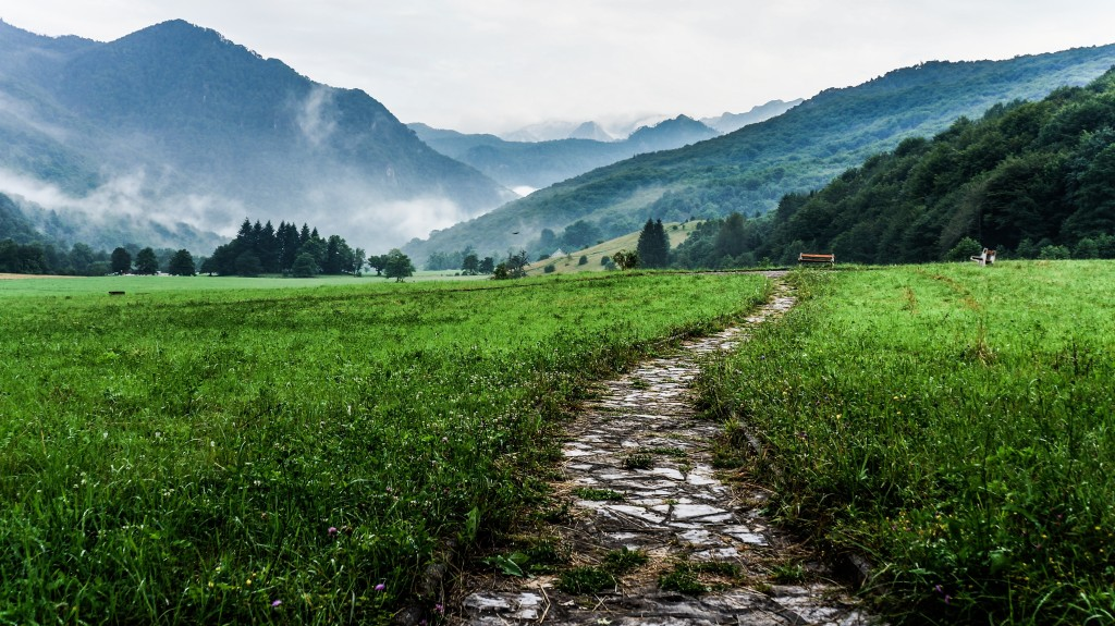 Rocky path through field leading to foggy mountains