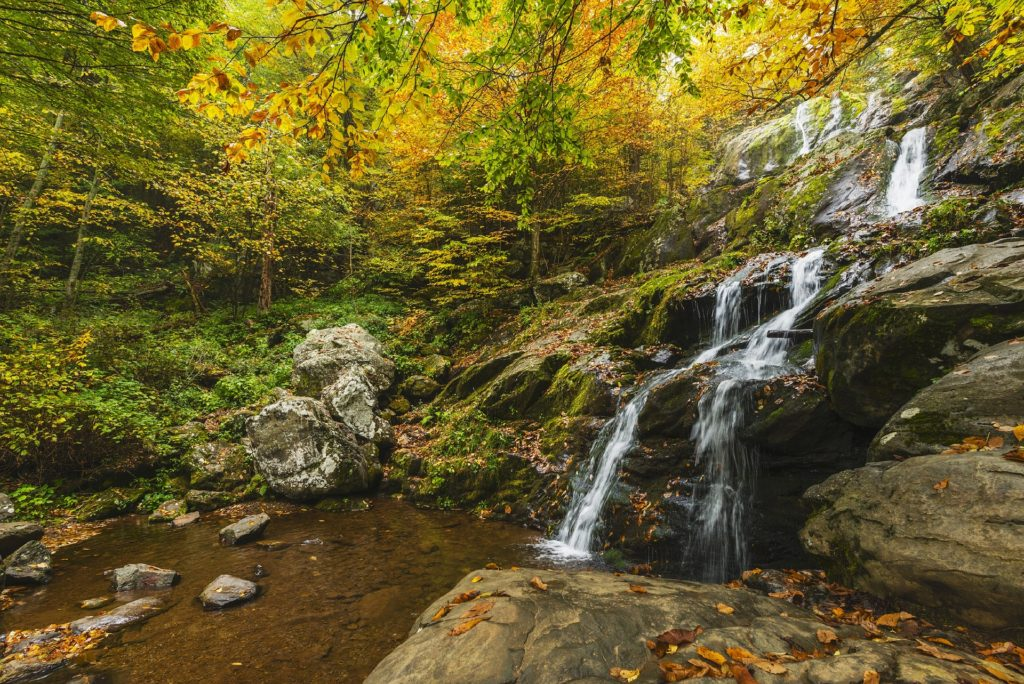 Finding God's Grace in a Tumultuous World_gentle waterfall flowing over rocks into calm stream, fall foliage in background