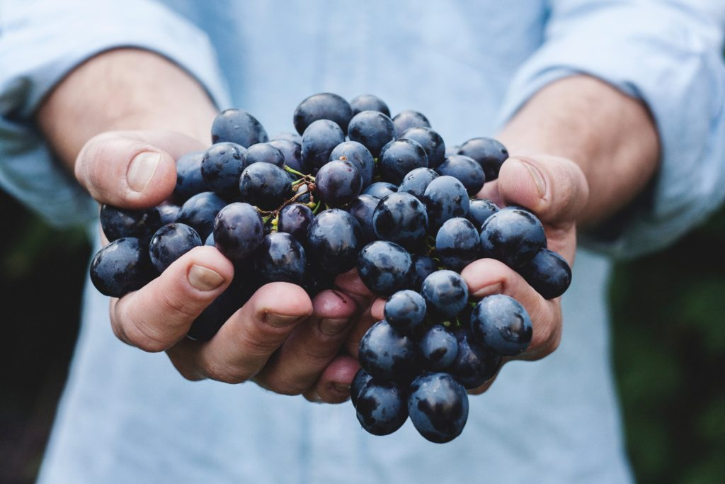 Fruit of the Spirit: Goodness--Selfless Care for Others