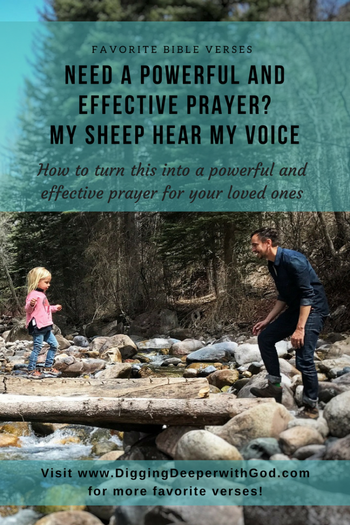 Need a Powerful and Effective Prayer? My Sheep Hear My Voice
