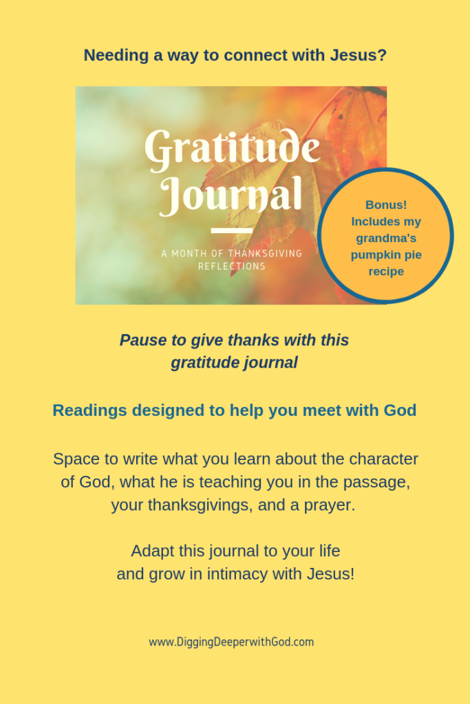 Gratitude Journal: A Month of Thanksgiving Reflections